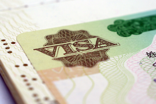 VIsa close up